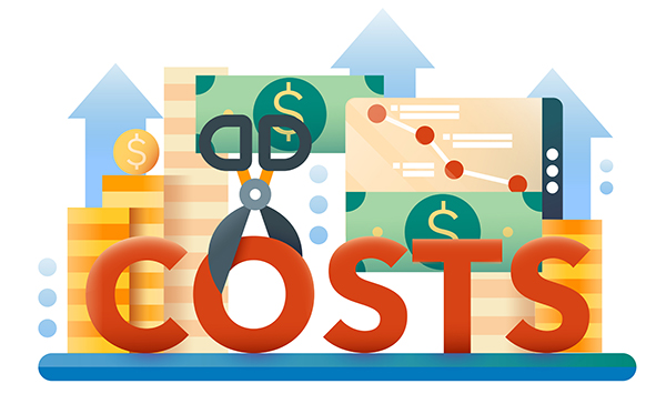 cost of hyperion support services